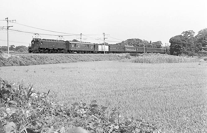 197608_5_001_2miyahama.jpg